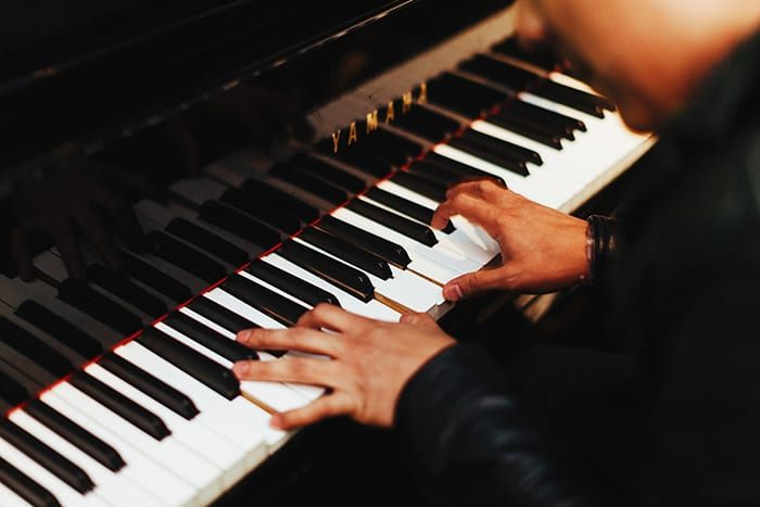 piano humidity control application photo